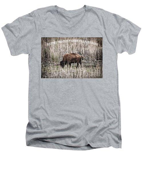 Lone Buffalo Men's V-Neck T-Shirt