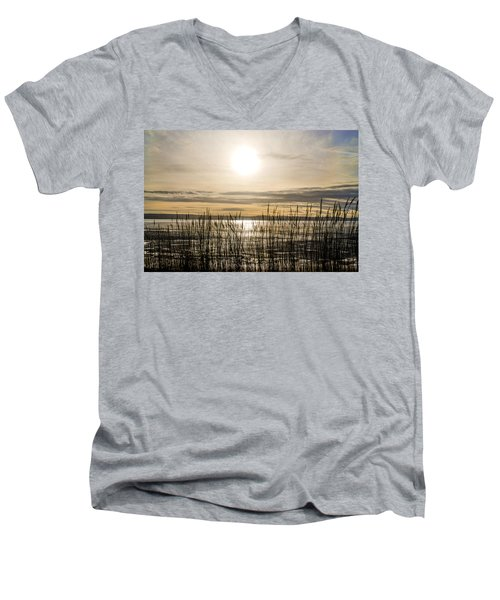 Looking At Wales Through The Grass Men's V-Neck T-Shirt