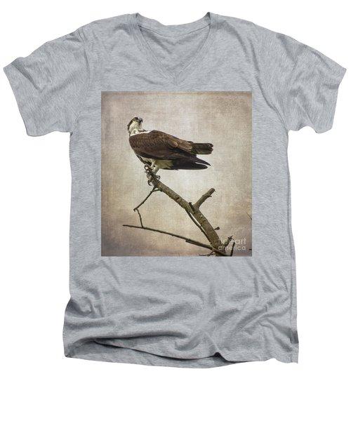 Looking For Dinner Men's V-Neck T-Shirt