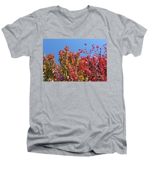 Men's V-Neck T-Shirt featuring the photograph Looking Upward by Debbie Hart