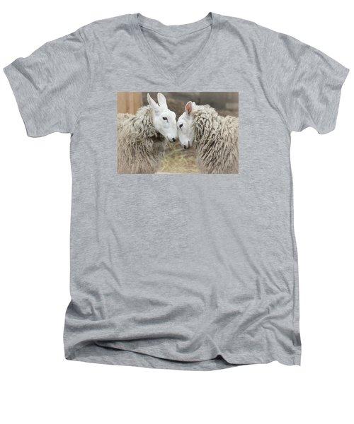 Love Me Sweet Men's V-Neck T-Shirt by The Art Of Marilyn Ridoutt-Greene