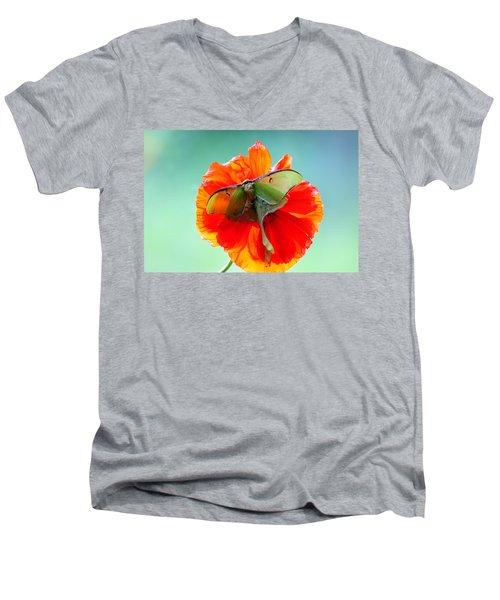 Luna Moth On Poppy Aqua Back Ground Men's V-Neck T-Shirt