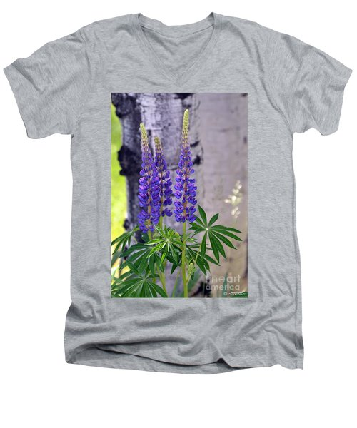Lupine Men's V-Neck T-Shirt