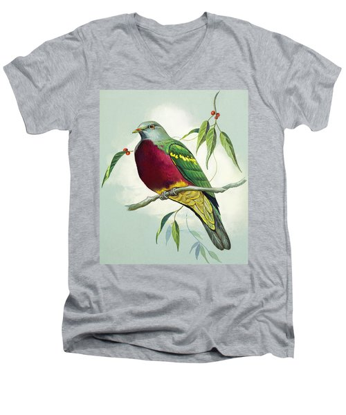 Magnificent Fruit Pigeon Men's V-Neck T-Shirt by Bert Illoss