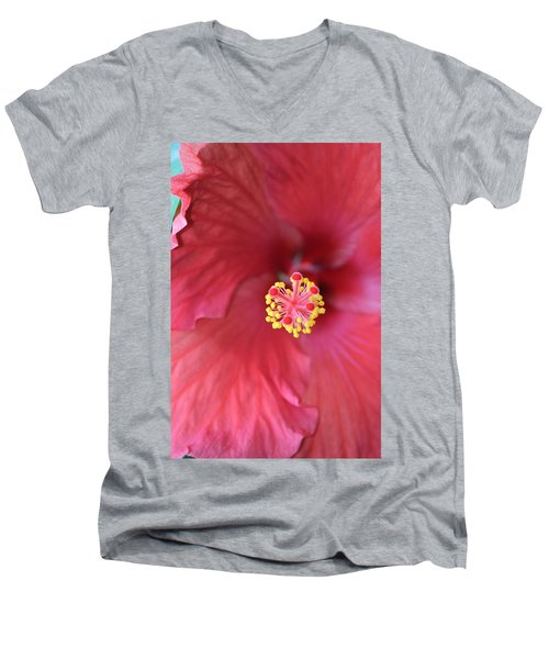 Magnolia 5  Men's V-Neck T-Shirt