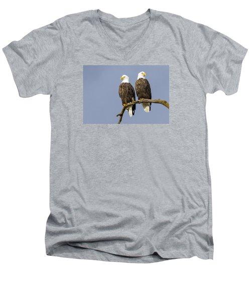 Majestic Beauty  6 Men's V-Neck T-Shirt by David Lester