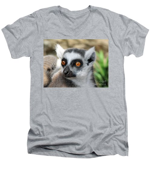 Men's V-Neck T-Shirt featuring the photograph Malagasy Lemur by Sergey Lukashin