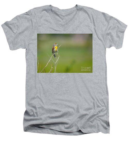 Male Dickcissel Men's V-Neck T-Shirt