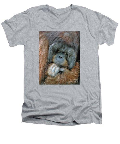 Men's V-Neck T-Shirt featuring the photograph Male Orangutan  by Savannah Gibbs