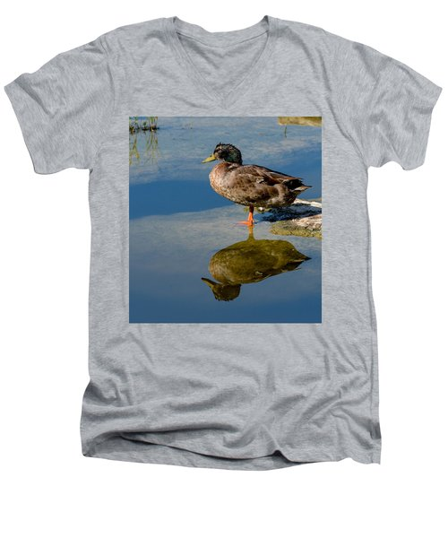Mallard Reflection Men's V-Neck T-Shirt