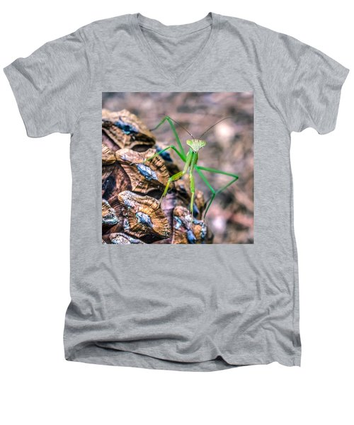 Mantis On A Pine Cone Men's V-Neck T-Shirt