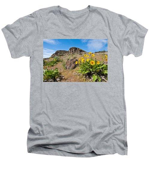 Meadow Of Arrowleaf Balsamroot Men's V-Neck T-Shirt by Jeff Goulden