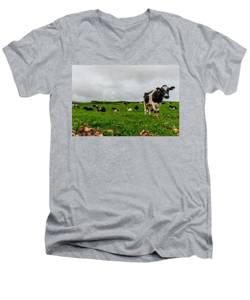 Milk Nature Nose Men's V-Neck T-Shirt