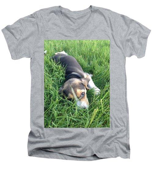 Milo Men's V-Neck T-Shirt