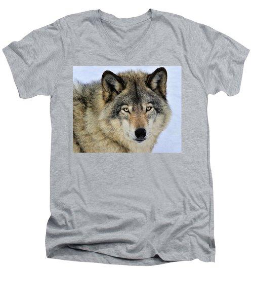 Misunderstood Men's V-Neck T-Shirt
