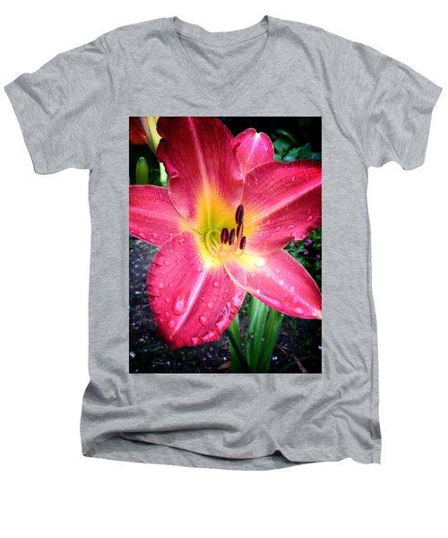 Mom's Secret Garden Men's V-Neck T-Shirt