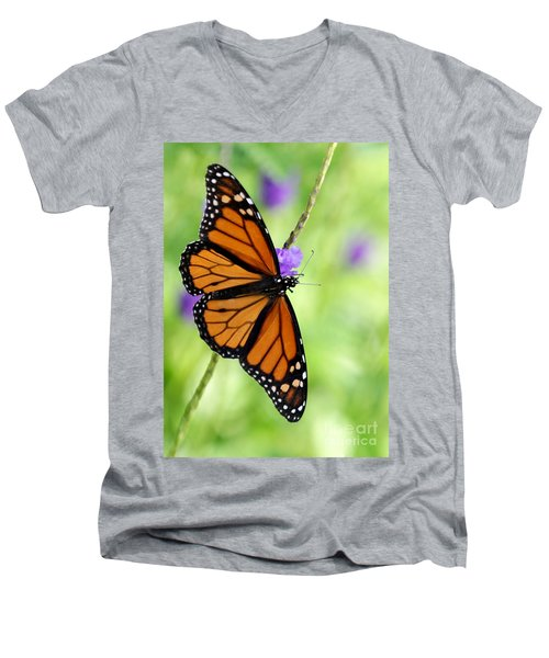 Monarch Butterfly In Spring Men's V-Neck T-Shirt