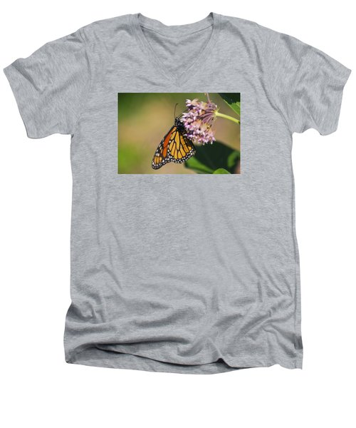 Monarch On Milkweed Men's V-Neck T-Shirt