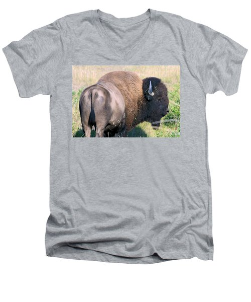 Montana Buffalo Bison Bull Men's V-Neck T-Shirt by Karon Melillo DeVega