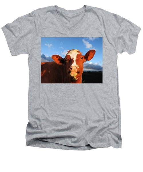 Moo Don't Say Cow Men's V-Neck T-Shirt
