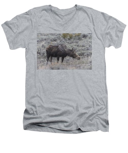 A Grazing Moose Men's V-Neck T-Shirt