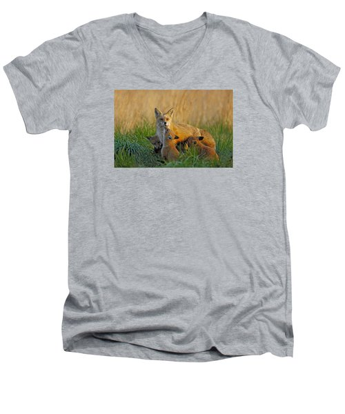 Mother Fox And Kits Men's V-Neck T-Shirt