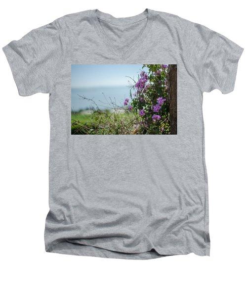 Mount Of Beatitudes Men's V-Neck T-Shirt