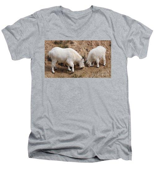 Mountain Goats At The Salt Lick Men's V-Neck T-Shirt by Vivian Christopher