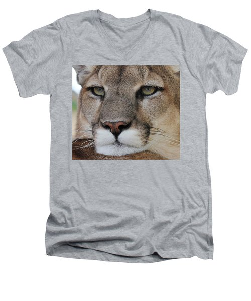 Mountain Lion Portrait 2 Men's V-Neck T-Shirt