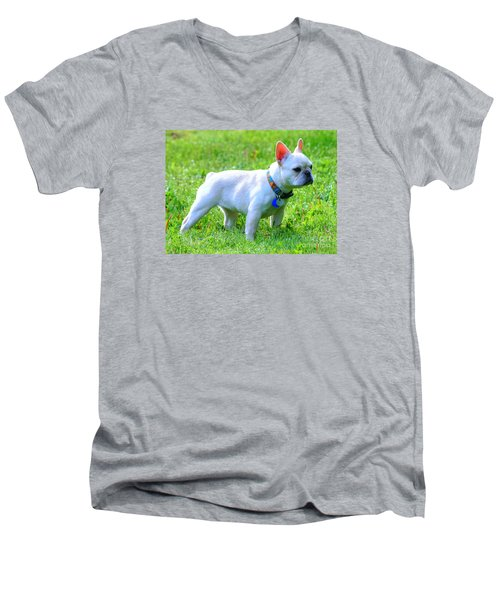 Ms. Quiggly - French Bulldog Men's V-Neck T-Shirt