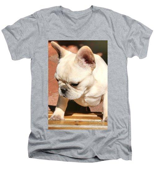 French Bulldog Ms Quiggly  Men's V-Neck T-Shirt