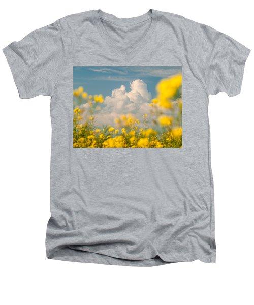 Mt Cloud Men's V-Neck T-Shirt
