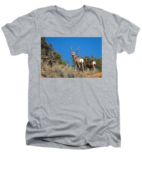 Mule Deer Buck Men's V-Neck T-Shirt