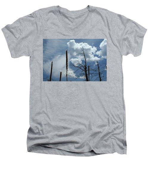 Mulling It Over Men's V-Neck T-Shirt