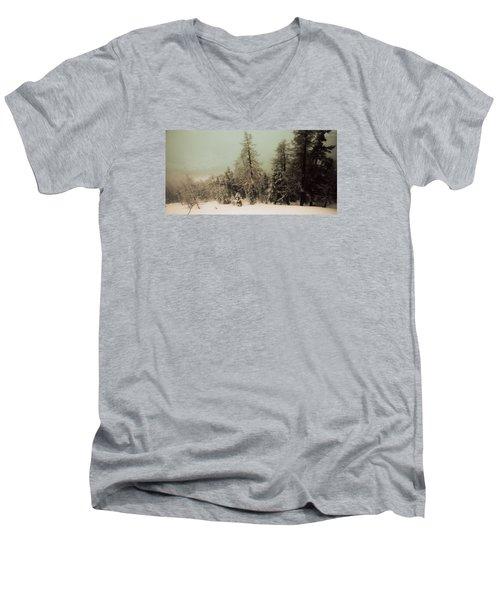 Mystic Woods Men's V-Neck T-Shirt by Vittorio Chiampan