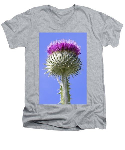 National Flower Of Scotland Men's V-Neck T-Shirt