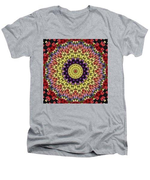 Natural Attributes 09 Square Men's V-Neck T-Shirt by Wendy J St Christopher