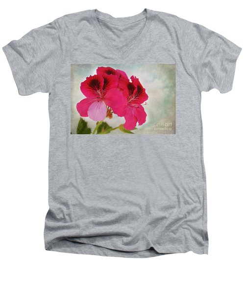 Natural Beauty Men's V-Neck T-Shirt by Claudia Ellis
