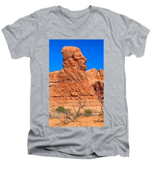Men's V-Neck T-Shirt featuring the photograph Natural Sculpture by John M Bailey