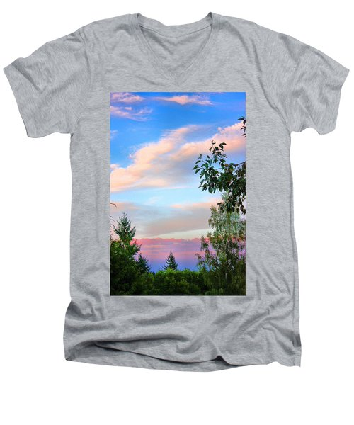 Men's V-Neck T-Shirt featuring the photograph Nature Palette by Kristin Elmquist