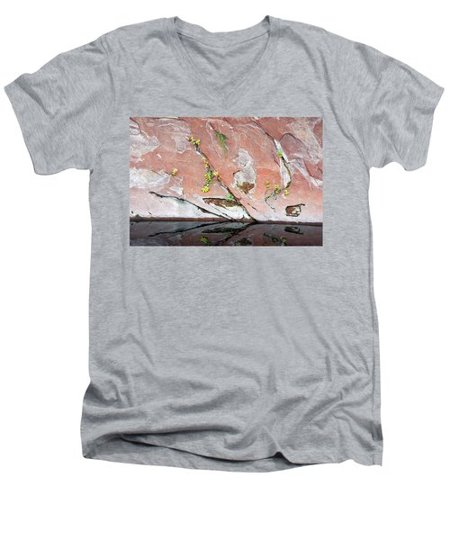 Nature's Abstract Men's V-Neck T-Shirt