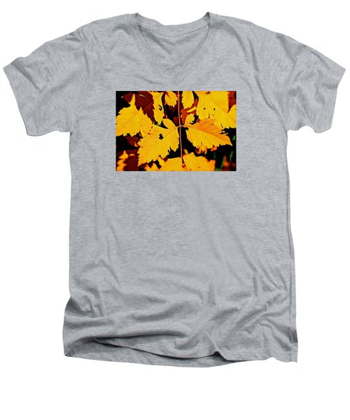 Nature's Designworks Men's V-Neck T-Shirt