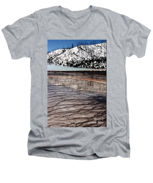 Men's V-Neck T-Shirt featuring the photograph Nature's Mosaic II by Sharon Elliott