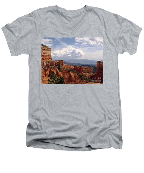 Nature's Symmetry Men's V-Neck T-Shirt