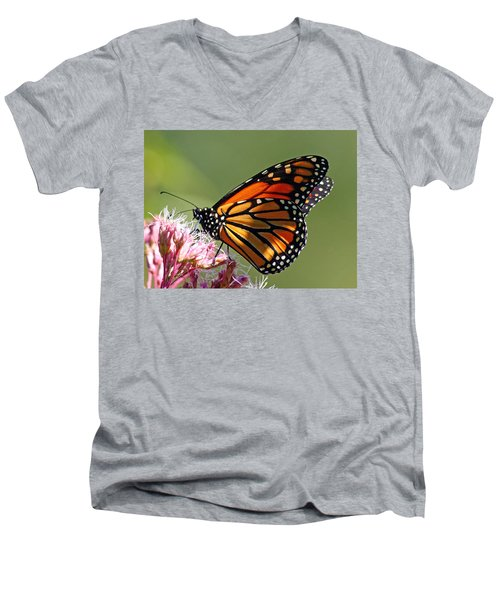 Men's V-Neck T-Shirt featuring the photograph Nectaring Monarch Butterfly by Debbie Oppermann