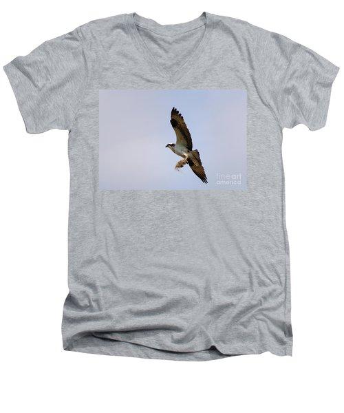 Nest Builder Men's V-Neck T-Shirt