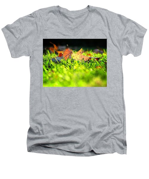 Men's V-Neck T-Shirt featuring the photograph Nestled by Greg Simmons