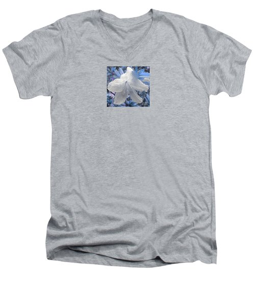 New Dew Men's V-Neck T-Shirt by Janice Westerberg