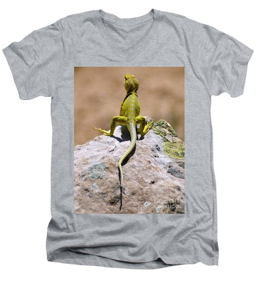 New Photographic Art Print For Sale Lizard Back Ghost Ranch New Mexico Men's V-Neck T-Shirt