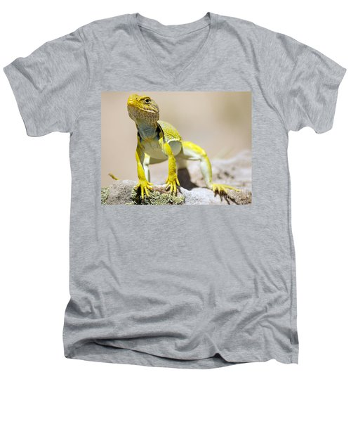 New Photographic Art Print For Sale Yellow Lizard Ghost Ranch New Mexico Men's V-Neck T-Shirt